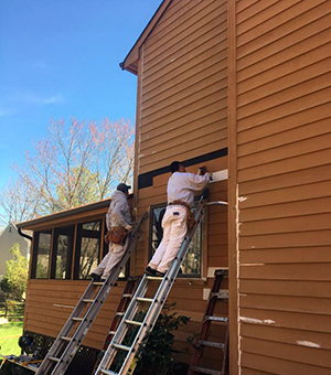 Cedar Siding Staining Columbia MD